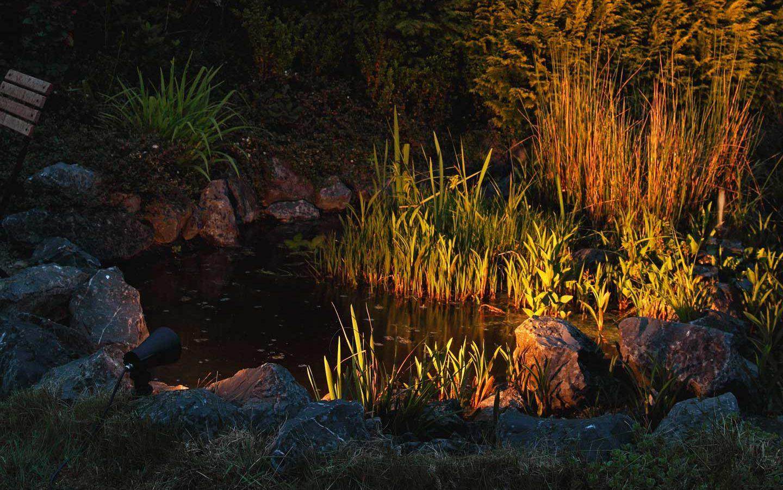 An atmospherically illuminated garden pond in the twilight.