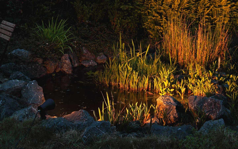 Ein stimmungsvoll beleuchteter Gartenteich in der Dämmerung.